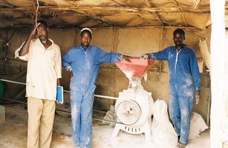 wheat flour mill africa
